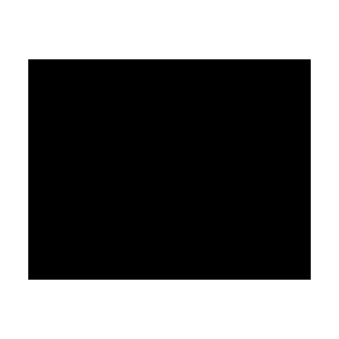 Logo der Marke Ice-Watch.