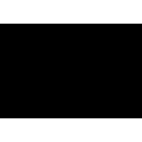 Logo der Marke Spirit Icons.